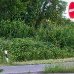 Le code de la route gratuit pour des jeunes
